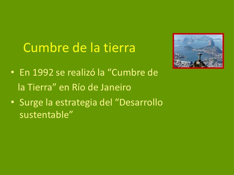 Cumbre de la tierra En 1992 se realizó la Cumbre de