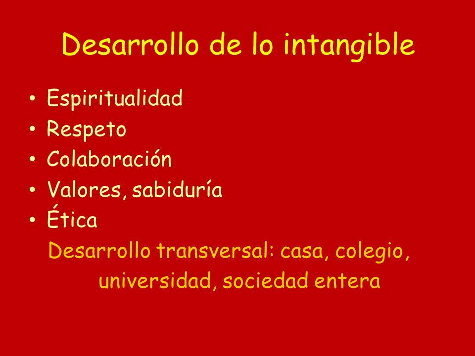 Desarrollo de lo intangible