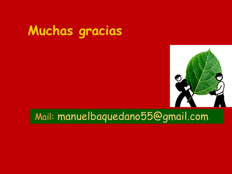 Muchas gracias Mail: manuelbaquedano55@gmail.com 40
