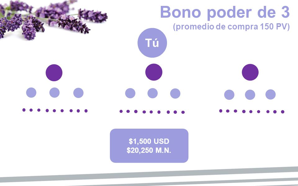 Bono poder de 3 (promedio de compra 150 PV)