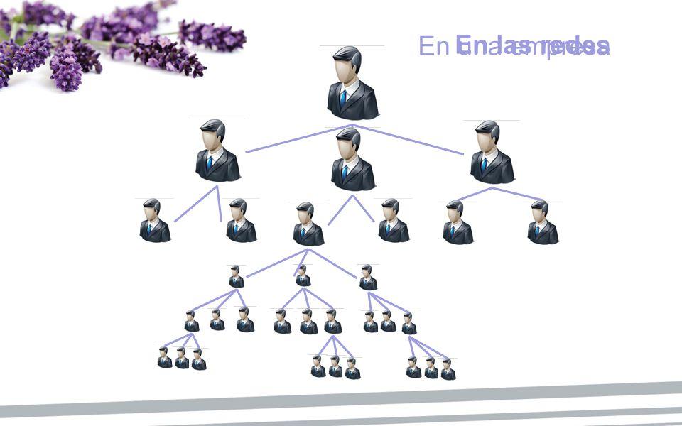 En una empresa En las redes