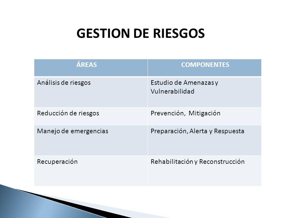GESTION DE RIESGOS ÁREAS COMPONENTES Análisis de riesgos