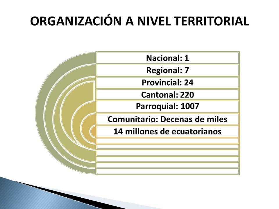 ORGANIZACIÓN A NIVEL TERRITORIAL