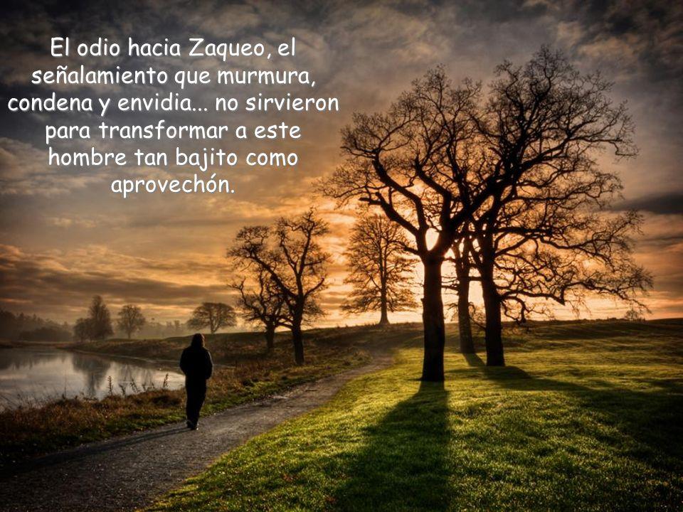 El odio hacia Zaqueo, el señalamiento que murmura, condena y envidia