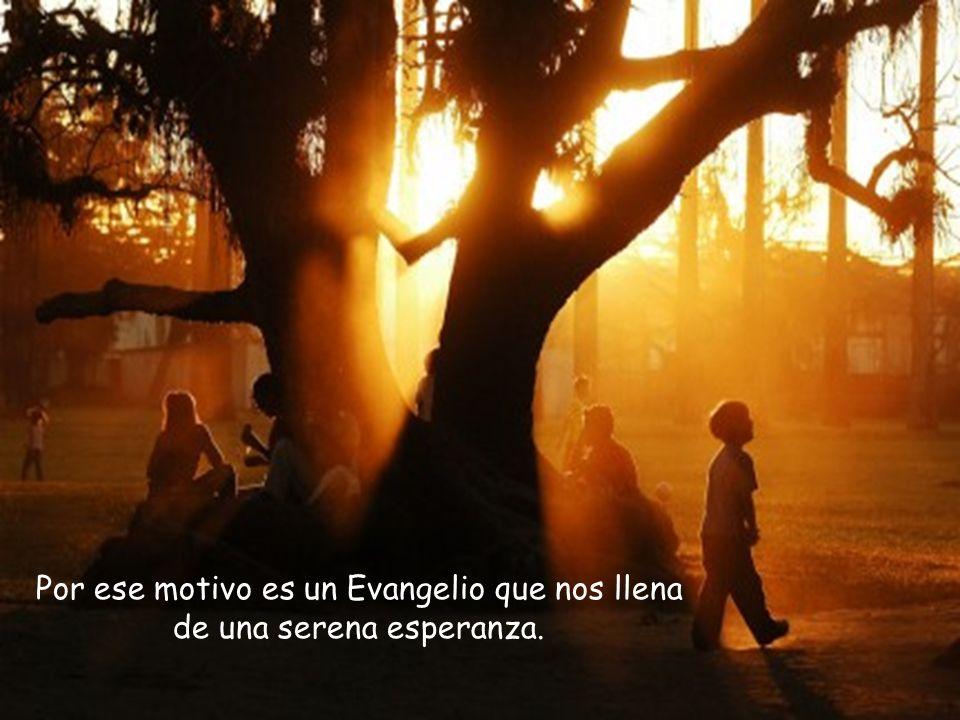 Por ese motivo es un Evangelio que nos llena de una serena esperanza.