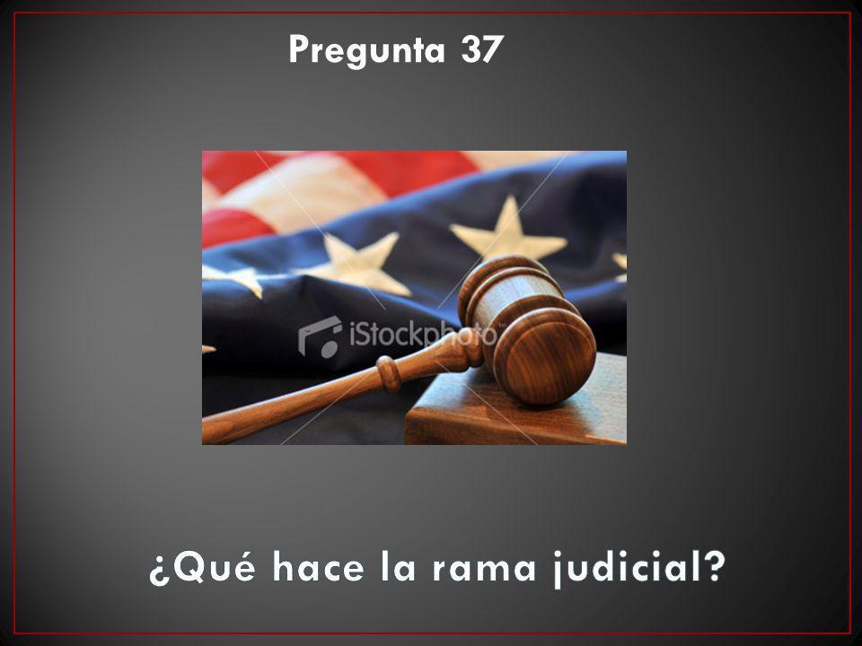 ¿Qué hace la rama judicial