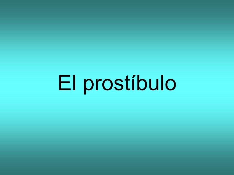 El prostíbulo