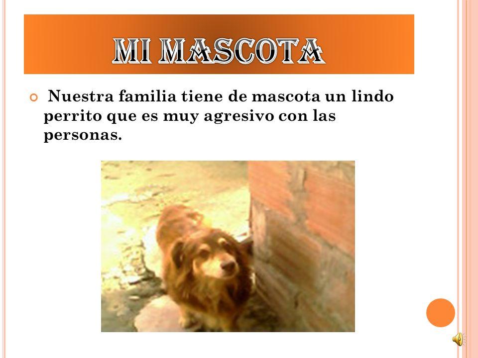 Mi mascota Nuestra familia tiene de mascota un lindo perrito que es muy agresivo con las personas.