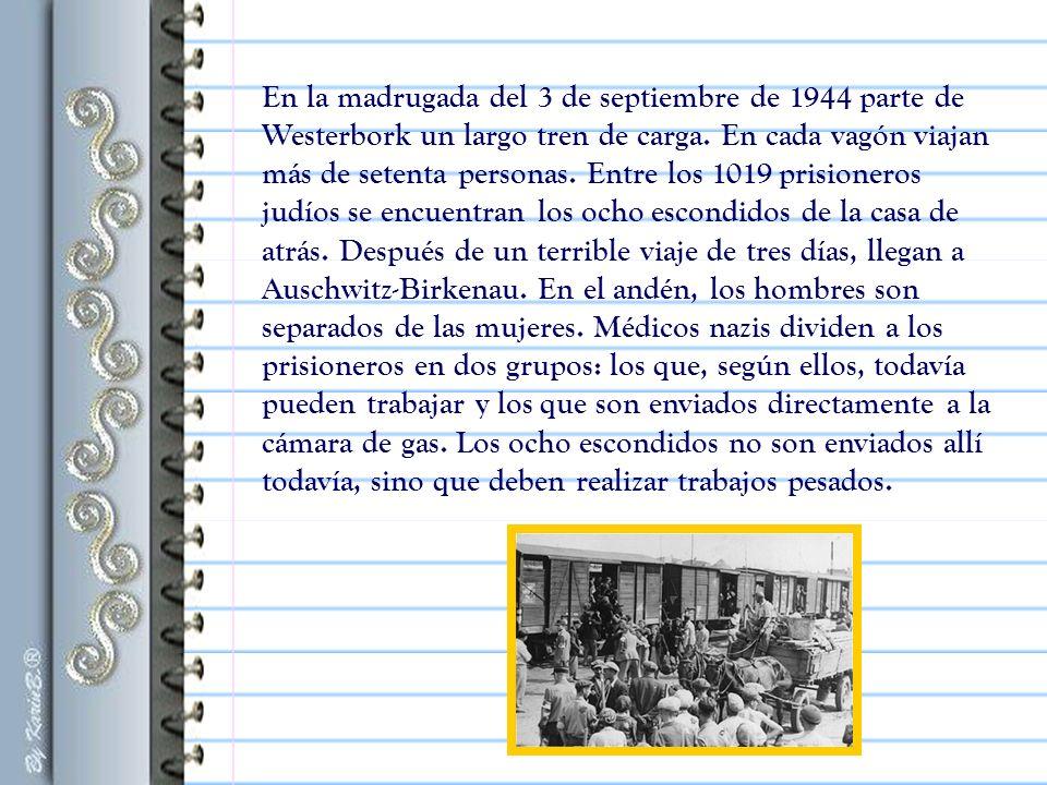 En la madrugada del 3 de septiembre de 1944 parte de Westerbork un largo tren de carga.