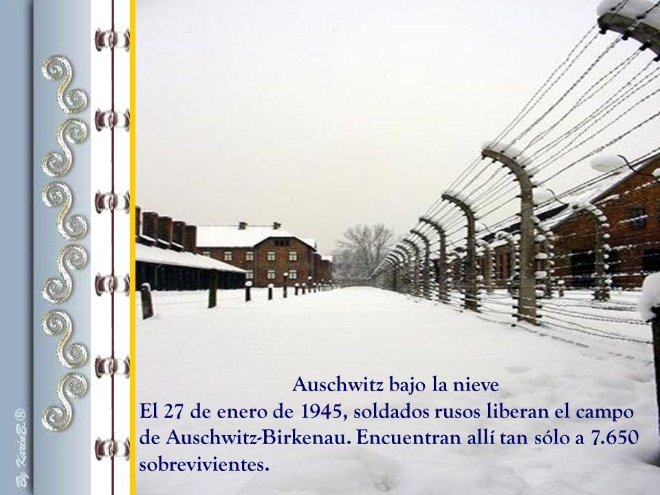 Auschwitz bajo la nieve