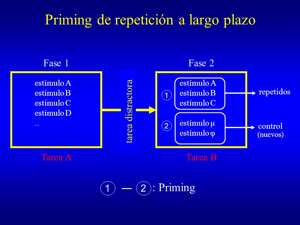 Priming de repetición a largo plazo