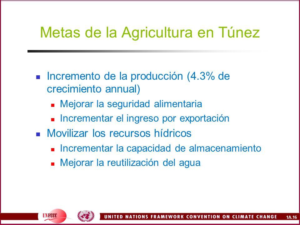 Metas de la Agricultura en Túnez