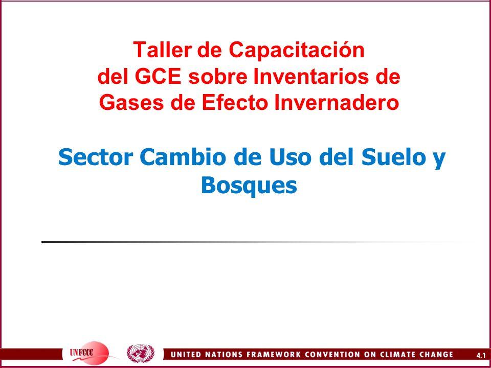 Taller de Capacitación del GCE sobre Inventarios de Gases de Efecto Invernadero Sector Cambio de Uso del Suelo y Bosques