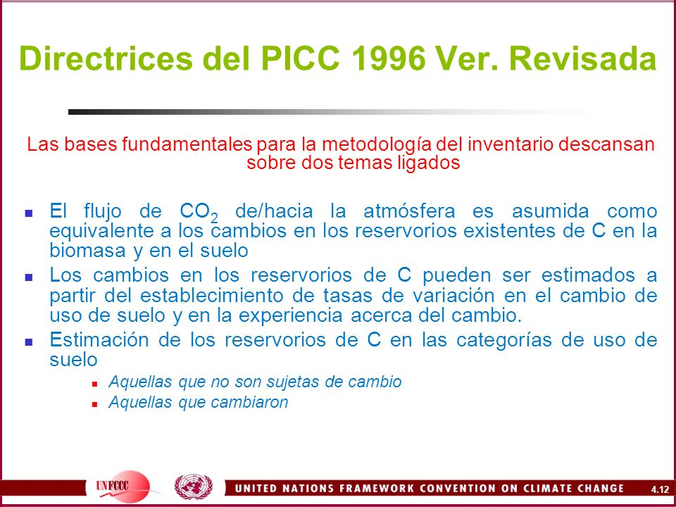 Directrices del PICC 1996 Ver. Revisada
