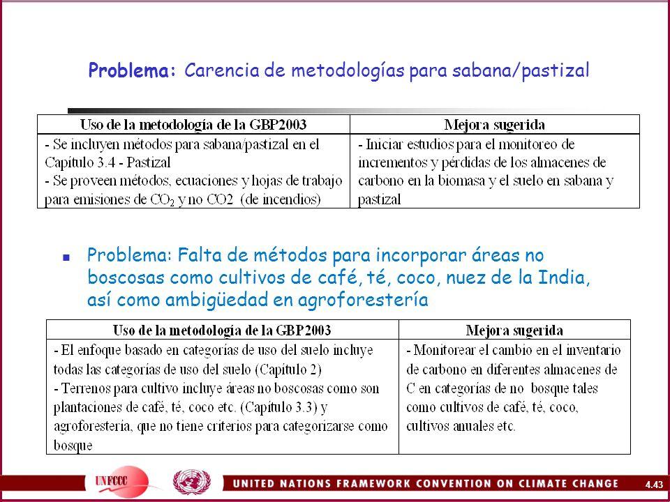 Problema: Carencia de metodologías para sabana/pastizal