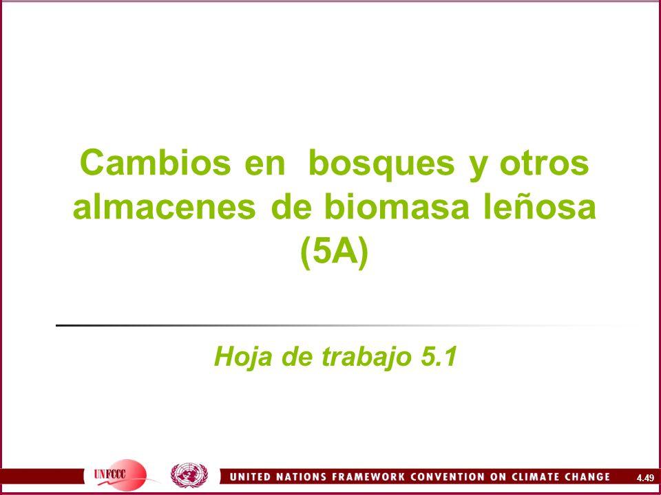 Cambios en bosques y otros almacenes de biomasa leñosa (5A)