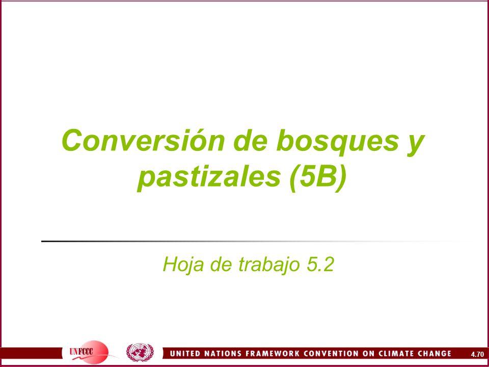 Conversión de bosques y pastizales (5B)