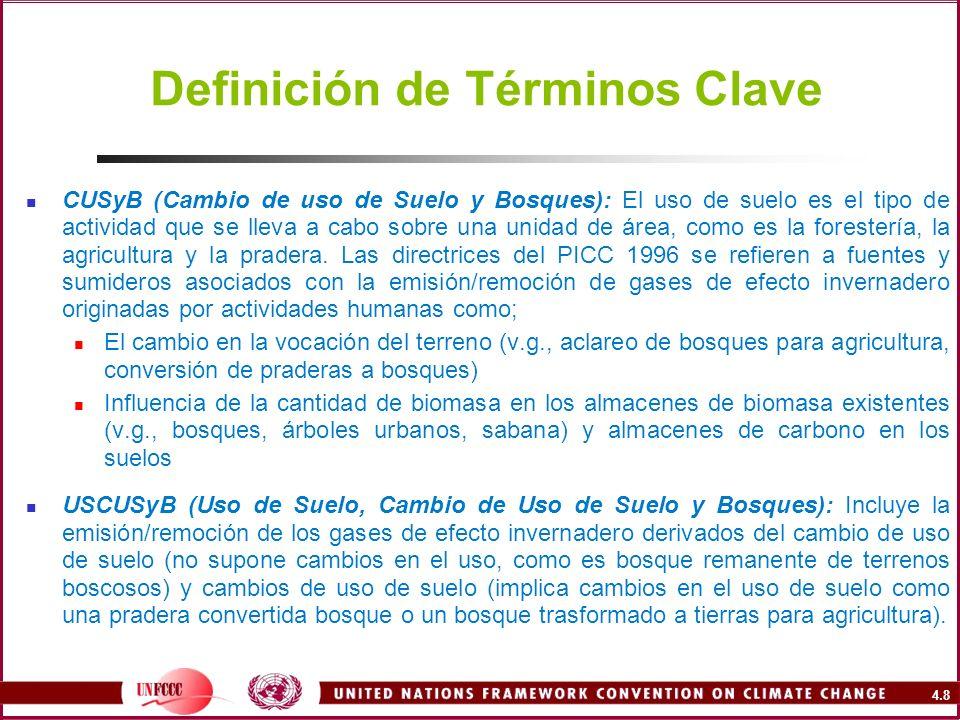 Definición de Términos Clave