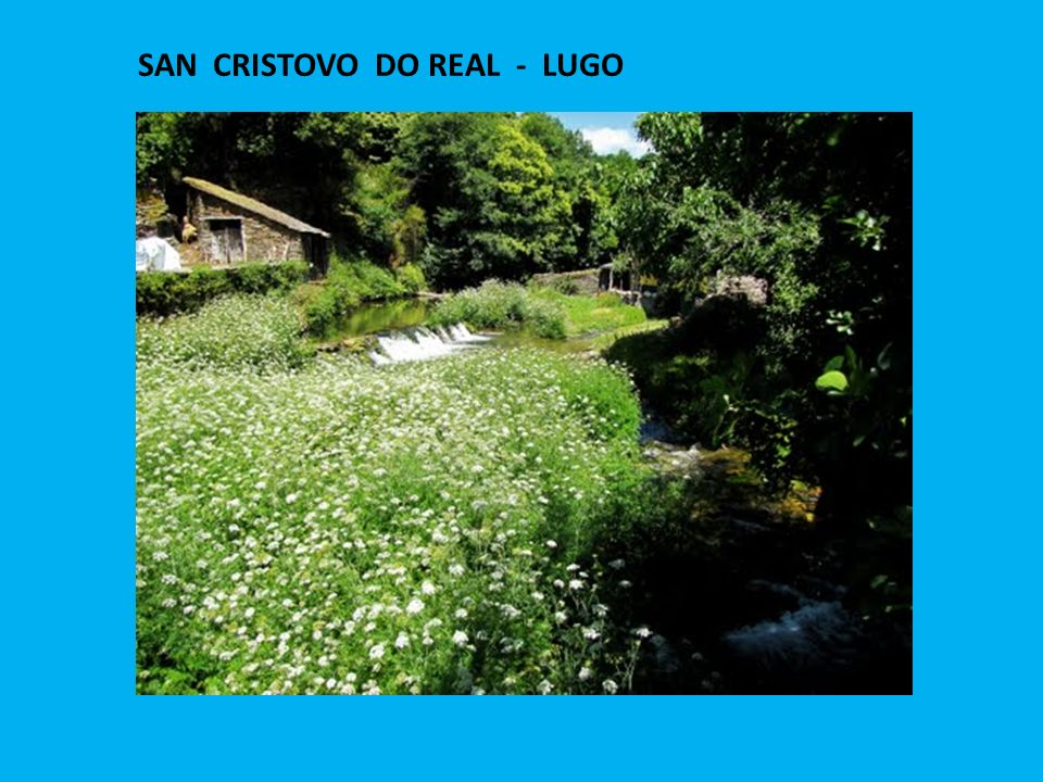 SAN CRISTOVO DO REAL - LUGO