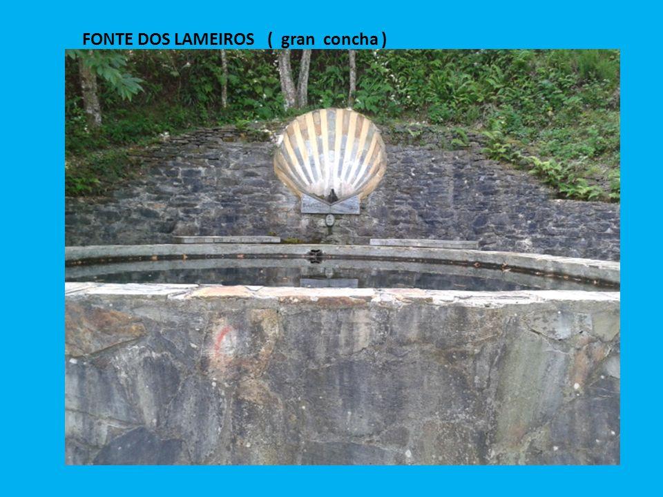FONTE DOS LAMEIROS ( gran concha )