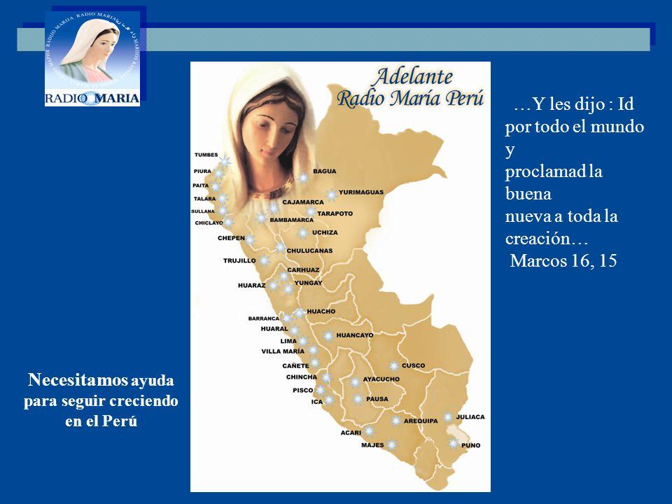 Necesitamos ayuda para seguir creciendo en el Perú