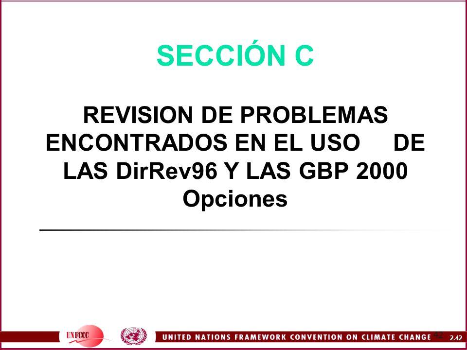 SECCIÓN C REVISION DE PROBLEMAS ENCONTRADOS EN EL USO DE LAS DirRev96 Y LAS GBP 2000 Opciones