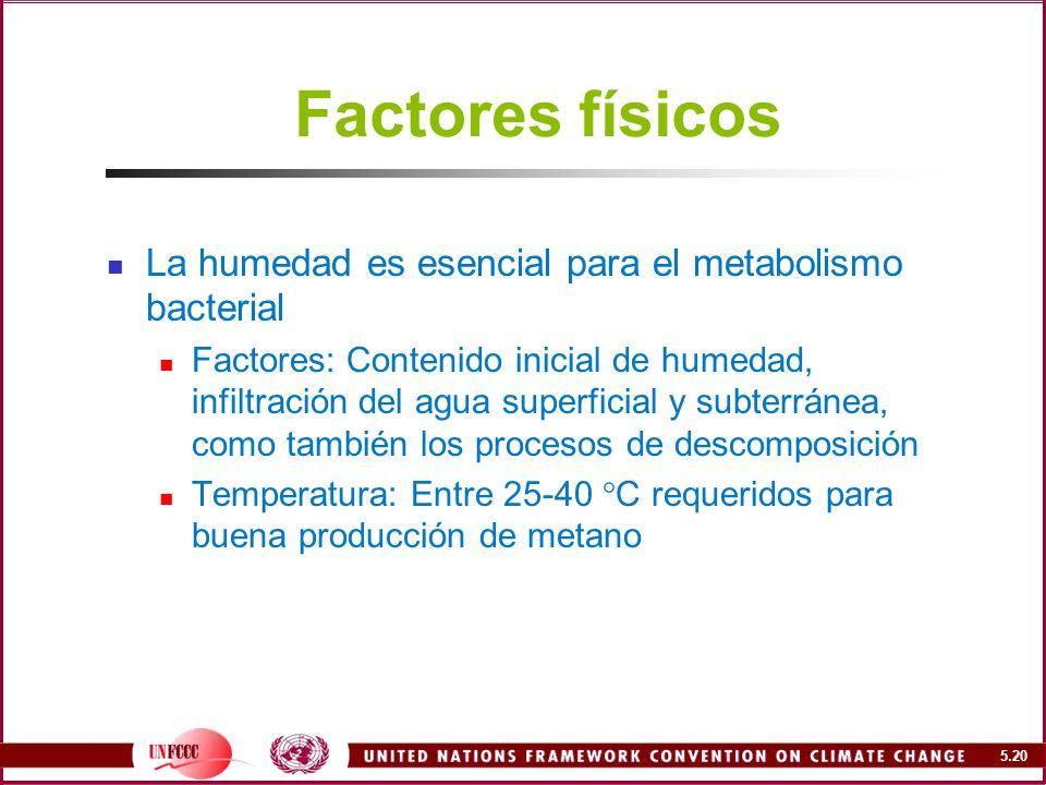 Factores físicos La humedad es esencial para el metabolismo bacterial