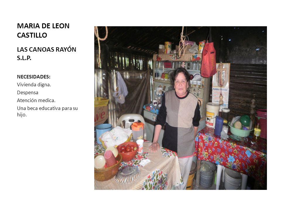 MARIA DE LEON CASTILLO LAS CANOAS RAYÓN S.L.P. NECESIDADES: