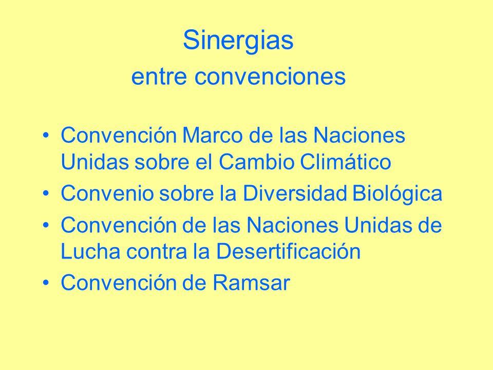 Sinergias entre convenciones