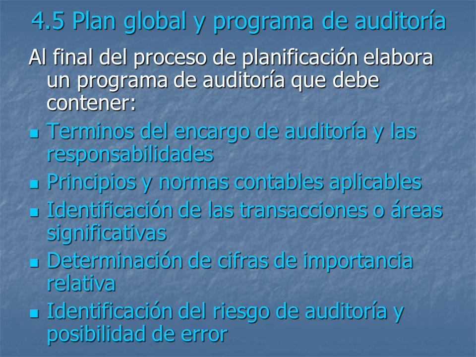 4.5 Plan global y programa de auditoría