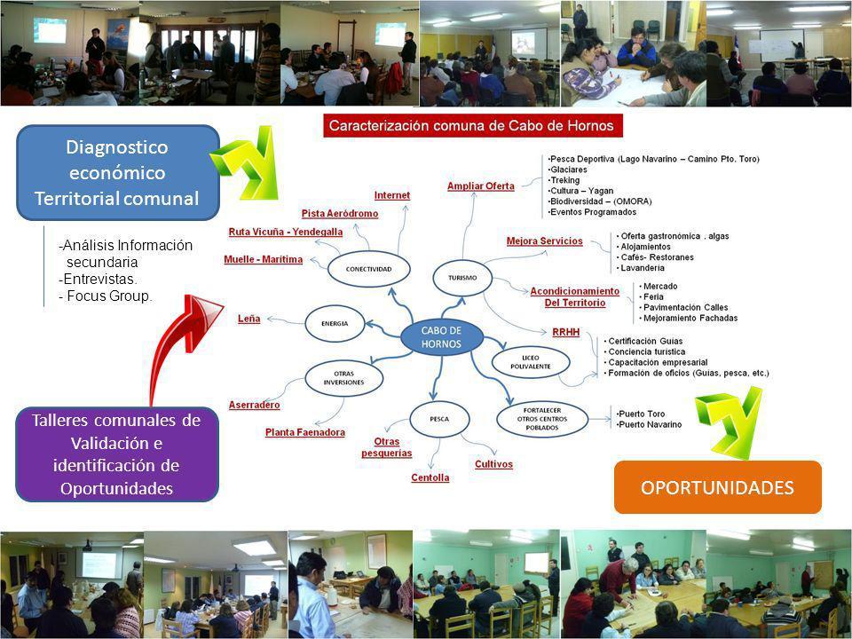 Diagnostico económico Territorial comunal