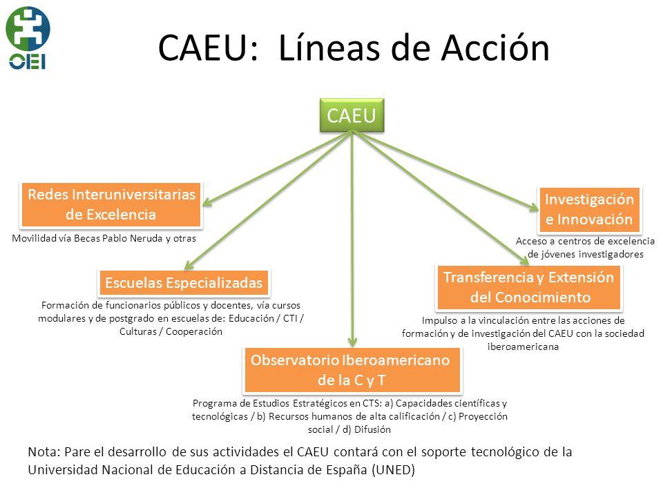 CAEU: Líneas de Acción CAEU Redes Interuniversitarias Investigación