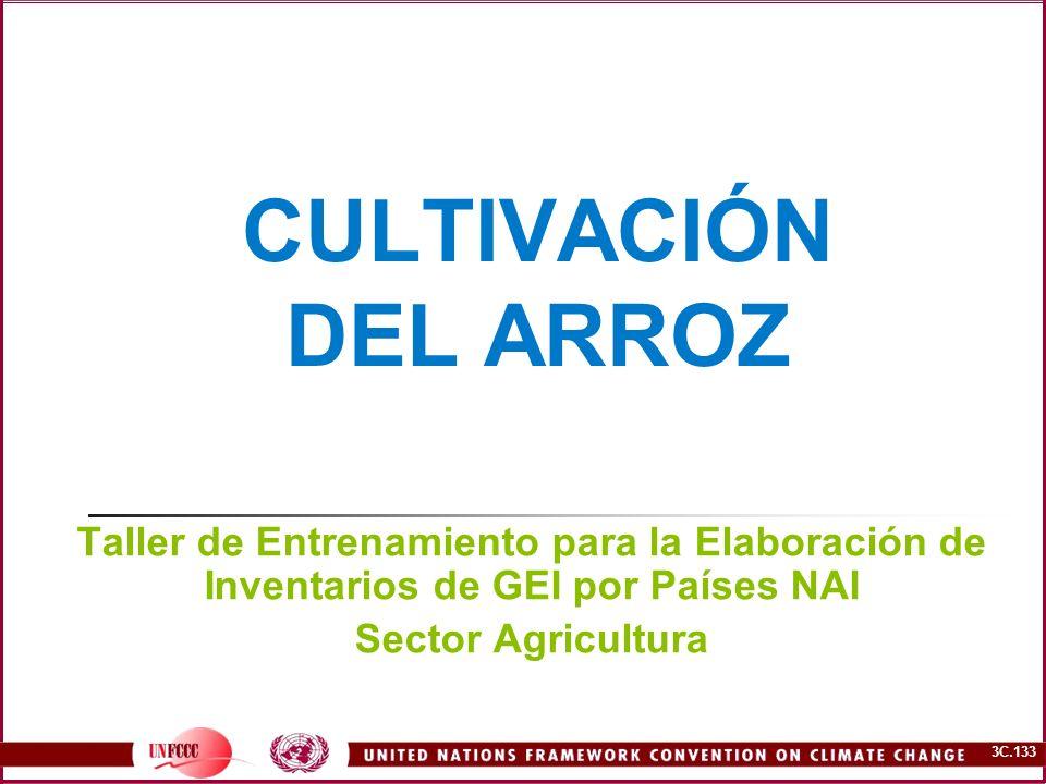 CULTIVACIÓN DEL ARROZ Taller de Entrenamiento para la Elaboración de Inventarios de GEI por Países NAI.