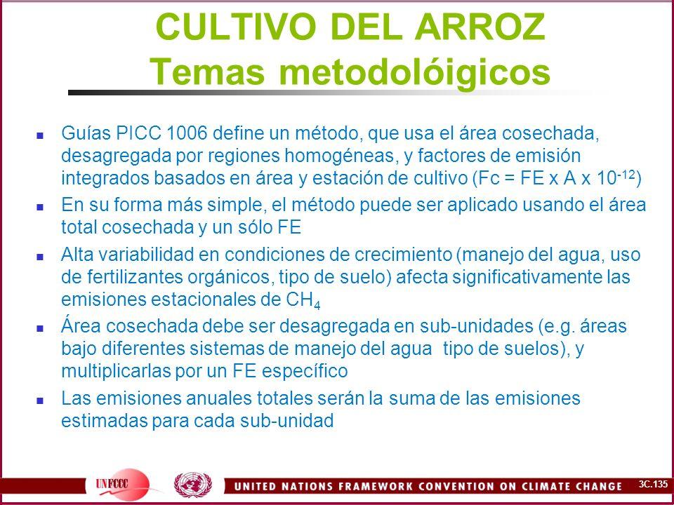 CULTIVO DEL ARROZ Temas metodolóigicos
