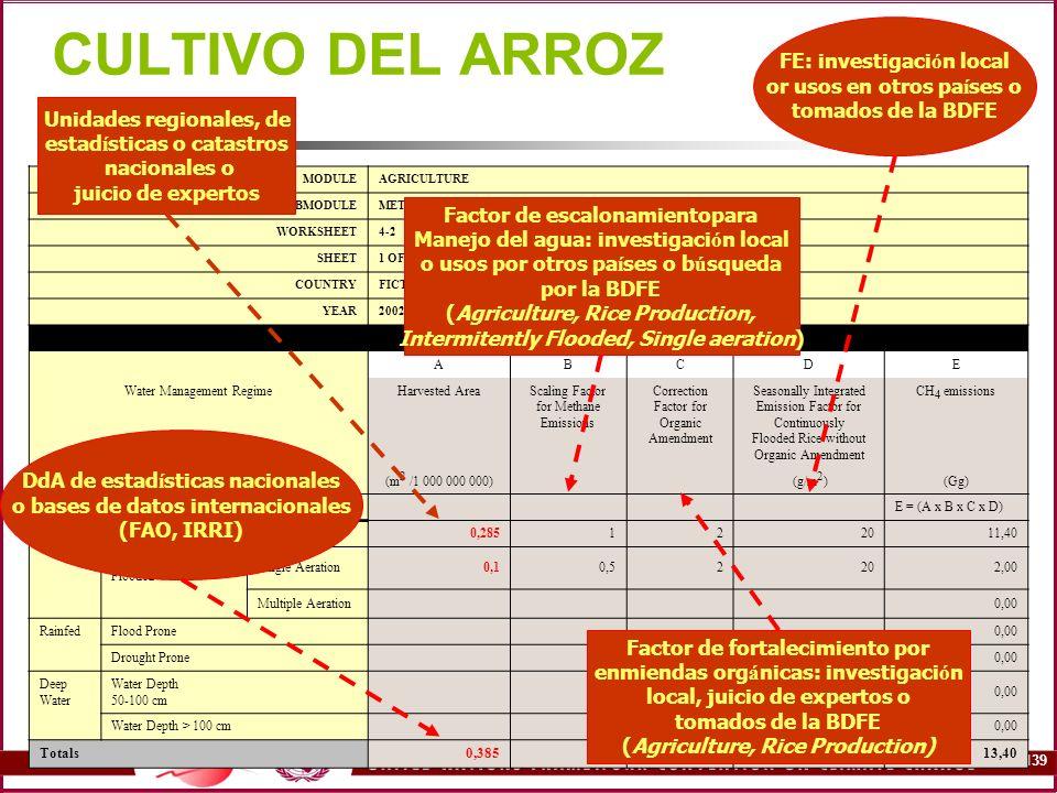 CULTIVO DEL ARROZ FE: investigación local or usos en otros países o