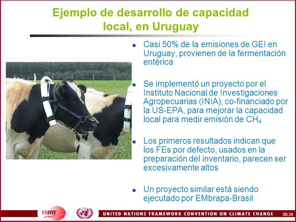 Ejemplo de desarrollo de capacidad local, en Uruguay