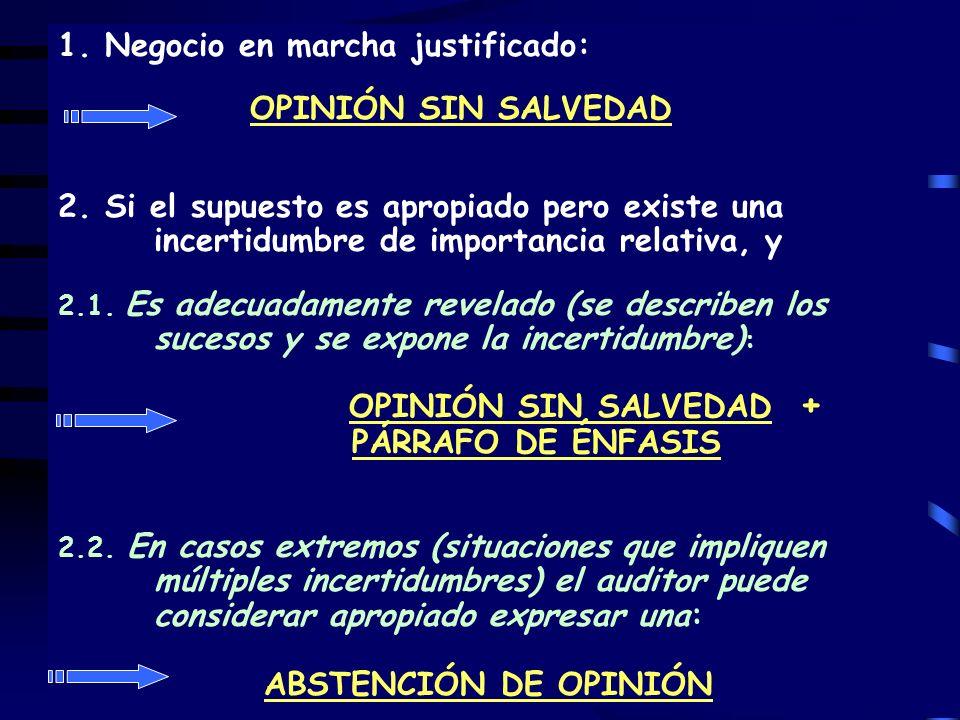 OPINIÓN SIN SALVEDAD + PÁRRAFO DE ÉNFASIS