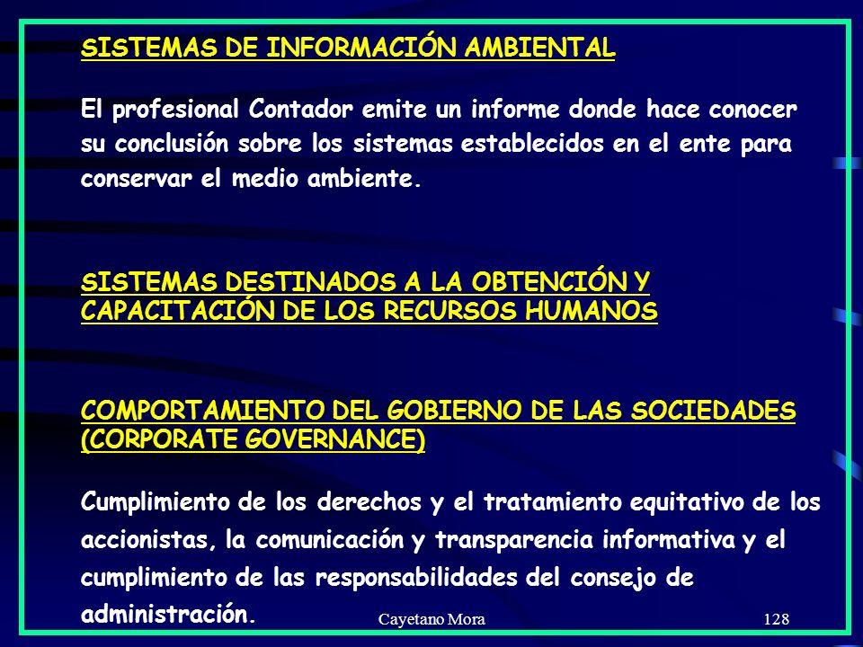 SISTEMAS DE INFORMACIÓN AMBIENTAL