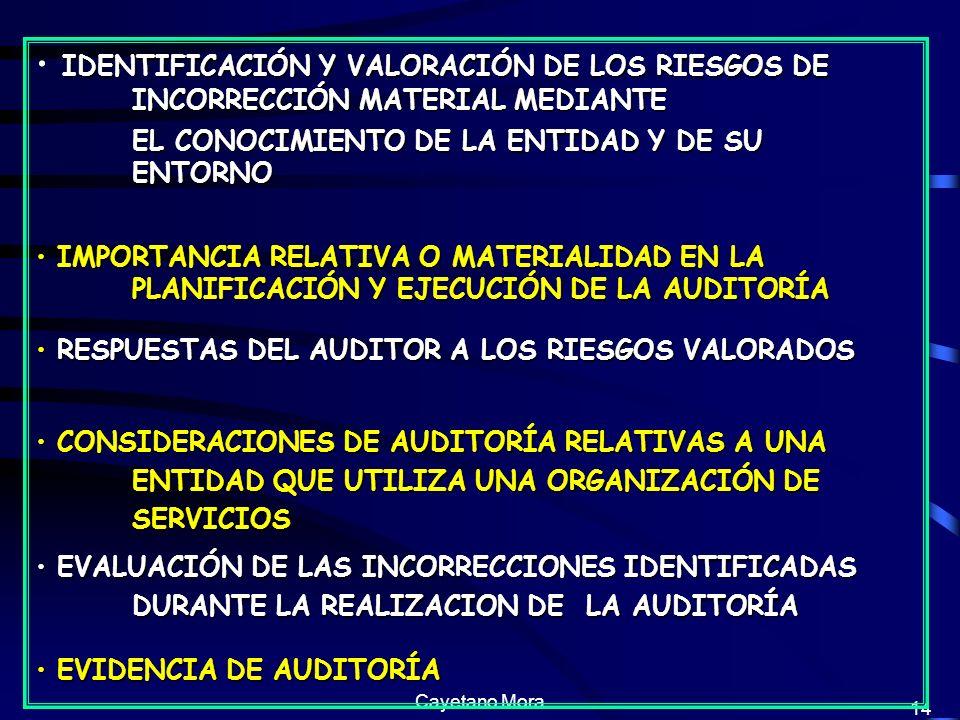 IDENTIFICACIÓN Y VALORACIÓN DE LOS RIESGOS DE