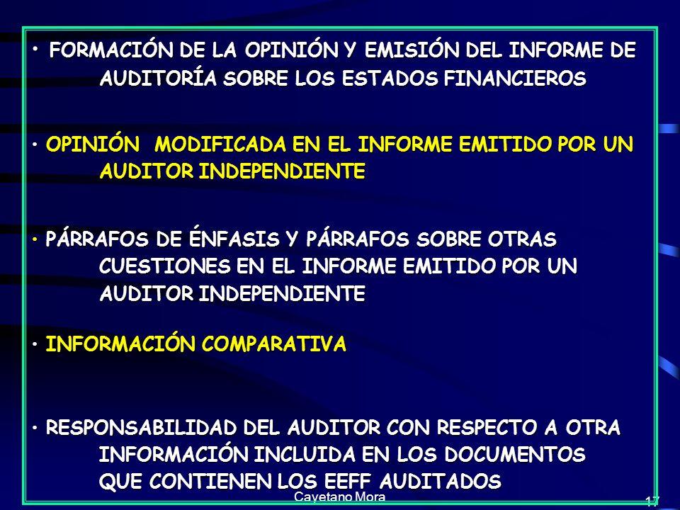FORMACIÓN DE LA OPINIÓN Y EMISIÓN DEL INFORME DE