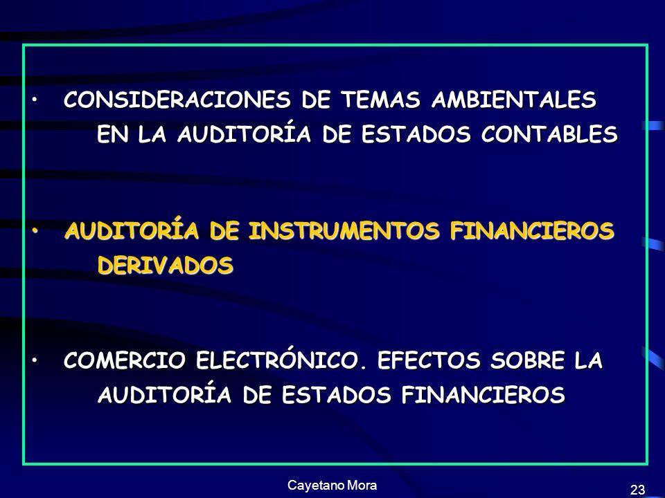 AUDITORÍA DE INSTRUMENTOS FINANCIEROS DERIVADOS