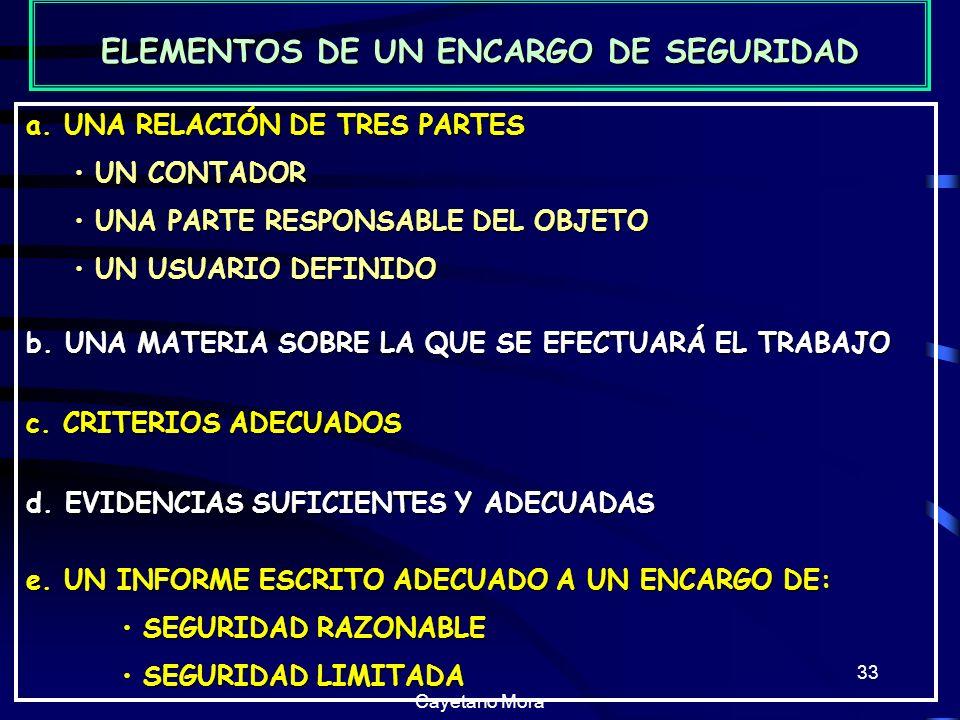 ELEMENTOS DE UN ENCARGO DE SEGURIDAD
