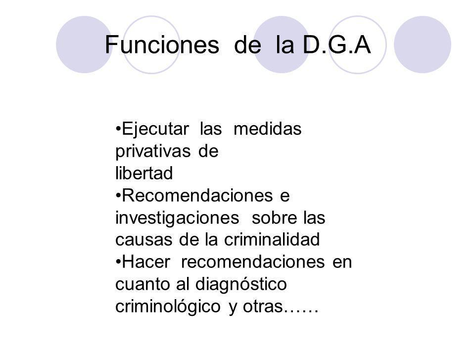 Funciones de la D.G.A Ejecutar las medidas privativas de libertad