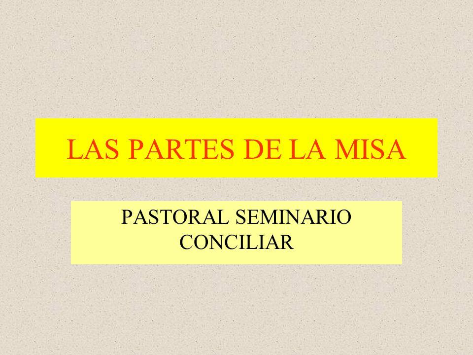 PASTORAL SEMINARIO CONCILIAR