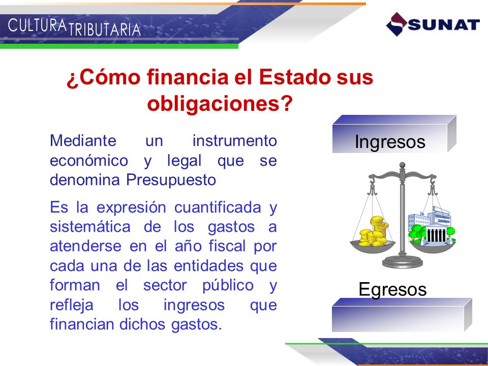 ¿Cómo financia el Estado sus obligaciones