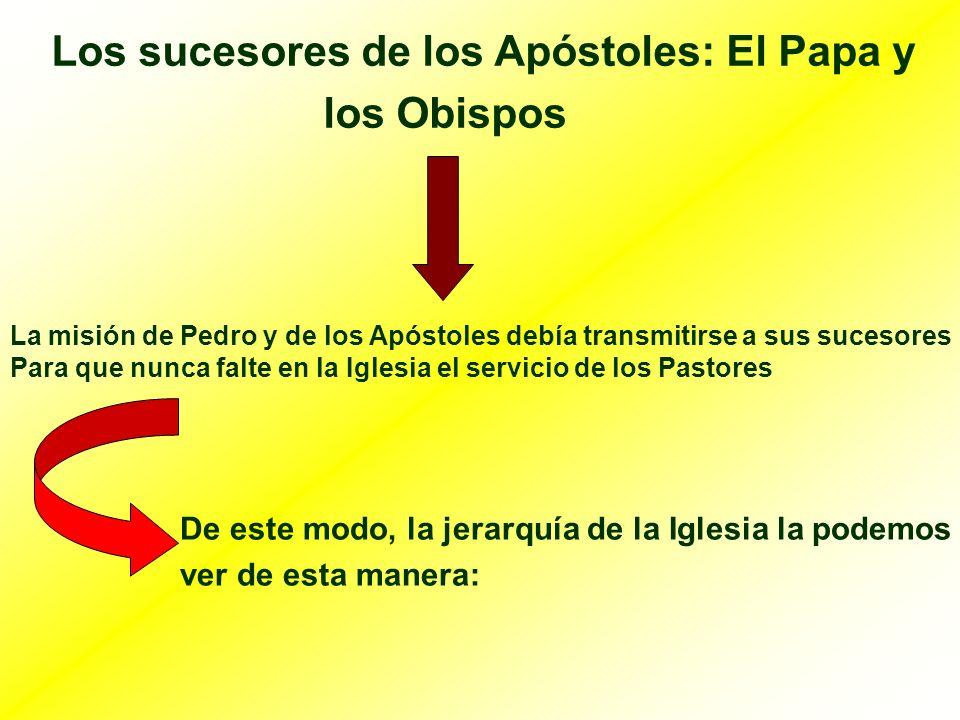 Los sucesores de los Apóstoles: El Papa y los Obispos