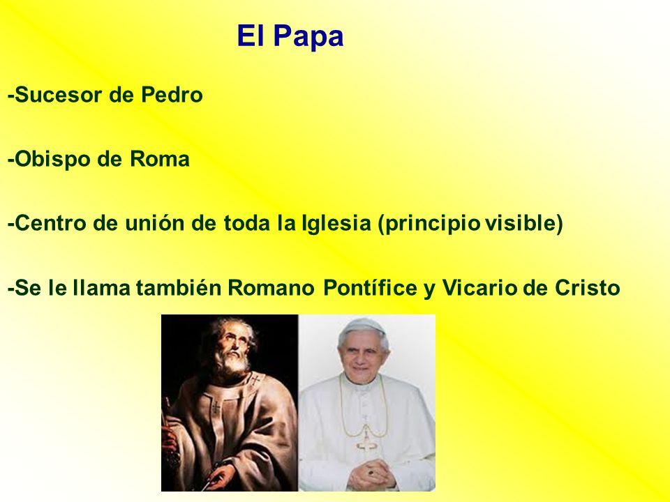 El Papa -Sucesor de Pedro -Obispo de Roma