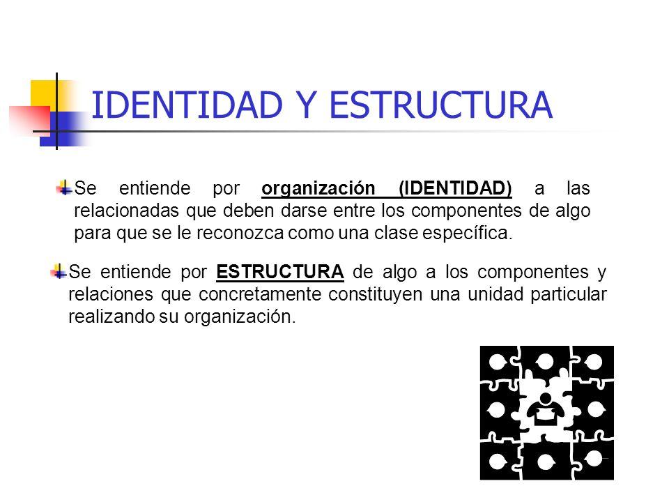 IDENTIDAD Y ESTRUCTURA