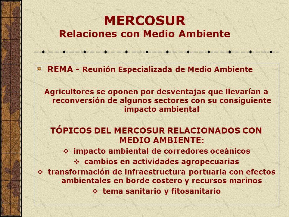 MERCOSUR Relaciones con Medio Ambiente