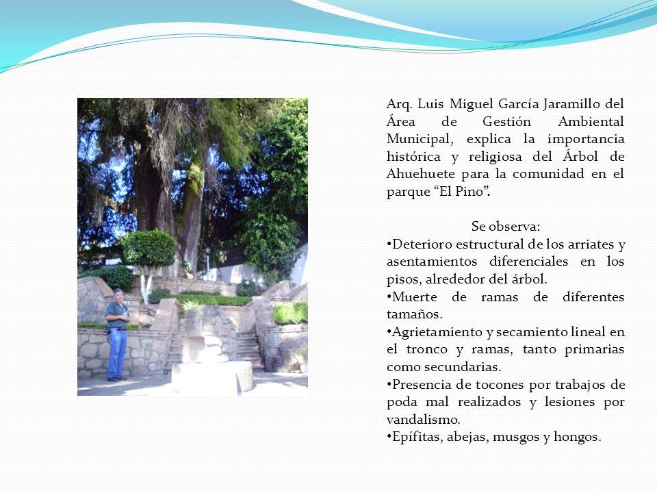 Arq. Luis Miguel García Jaramillo del Área de Gestión Ambiental Municipal, explica la importancia histórica y religiosa del Árbol de Ahuehuete para la comunidad en el parque El Pino .